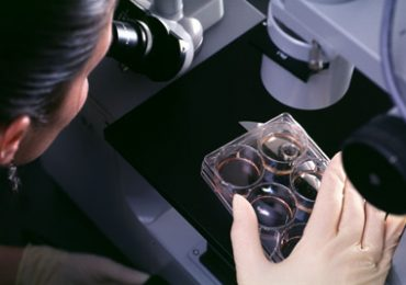 Células tronco contra doenças cardíacas
