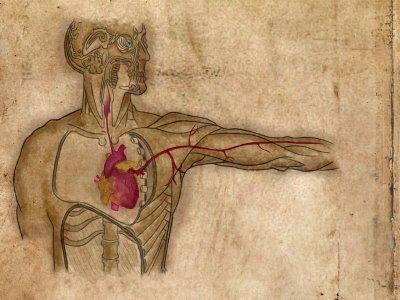 O que é Neoplasia Benigna e Maligna?
