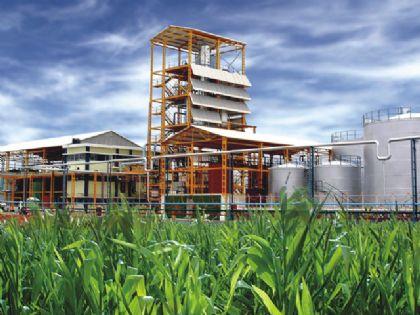Etanol e Biodiesel