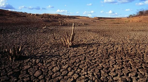 Caatinga: A pior seca dos últimos 50 anos