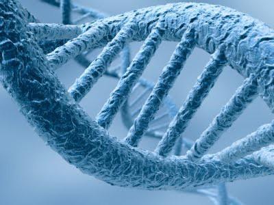 O que é DNA?