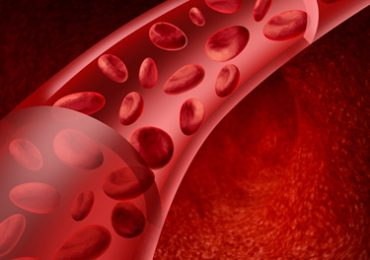 Coagulação do Sangue